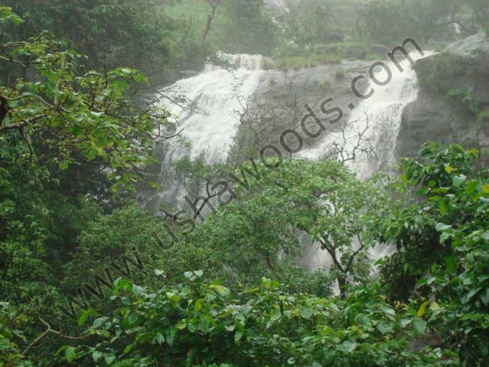 Water Fall at Bor Ghat