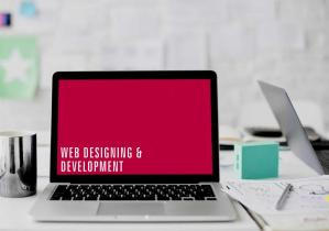 web designing, web development